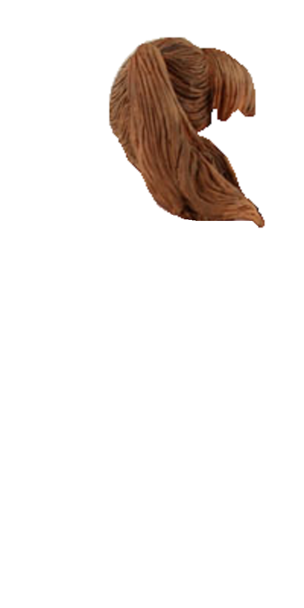Mindy McCready Pigtails Template.png